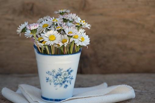 Цветя у дома – доближете се максимално до красотата на природата…